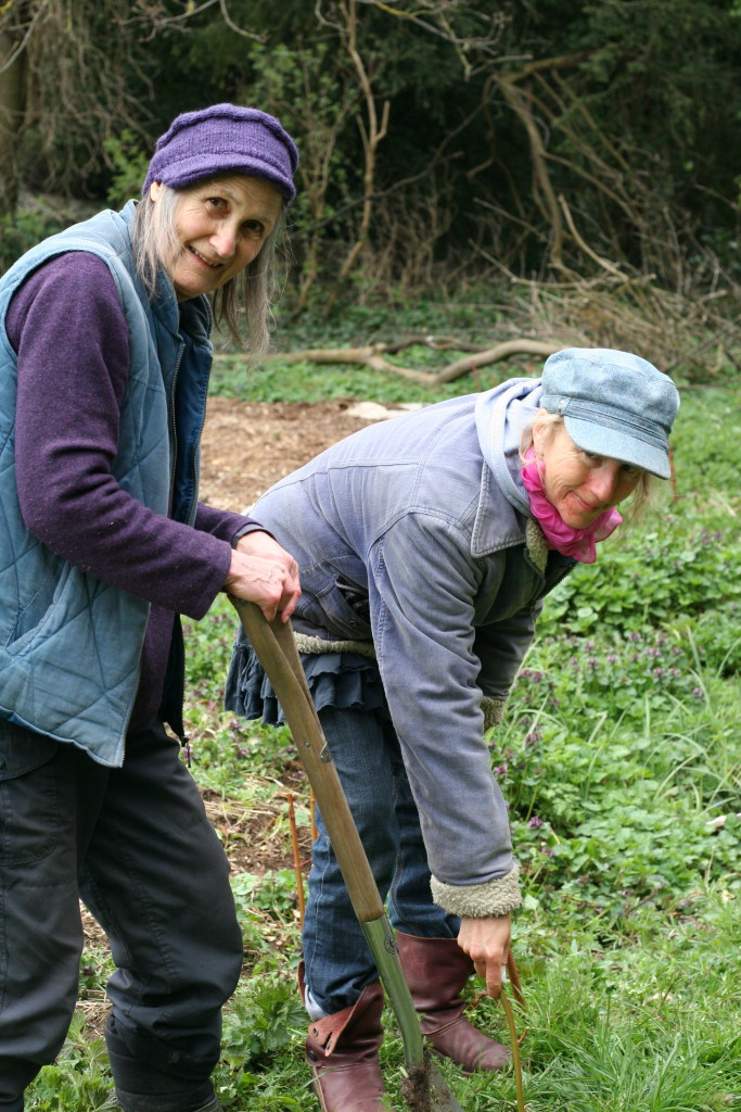 Planting at Stratford Court © Edible Stroud/Sarah Dixon 2015